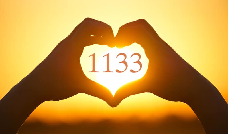 Love and Angel Number 1133