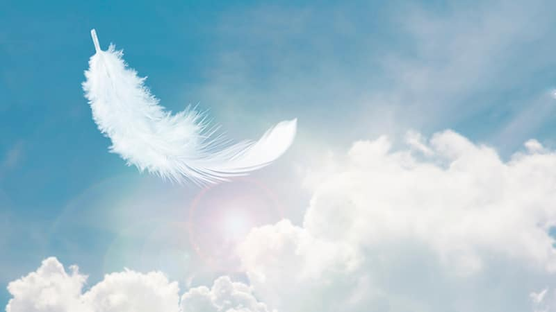 Why-you-should-pay-attention-to-angel-number-44